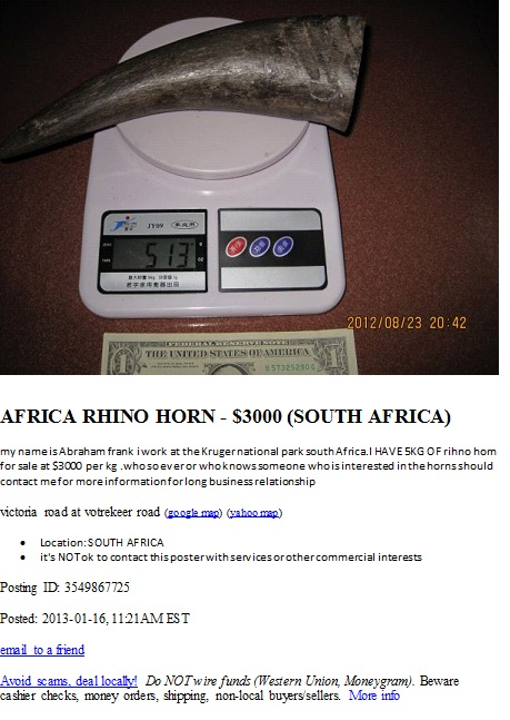 Rhino horn scam advert