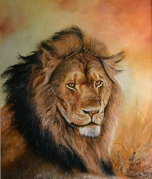 lionsportrait