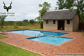 KNP - Orpen Camp - Pool