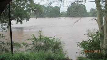 KNP - Shingwedzi River in flood, as viewed from Shingwedzi Rest Camp Restuarant - January 2013 (4)