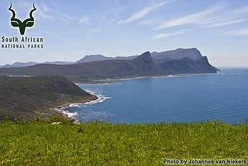 Table Mountain - Cape Point -