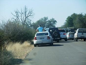 Breaking park rules at Lower Sabie