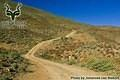 Richtersveld - Landscape - Road Scene