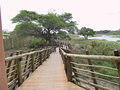 Lower Sabie