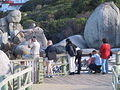 Boulders - Accessible Penguin Viewing Platform