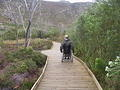 Silvermine Boardwalk (9)